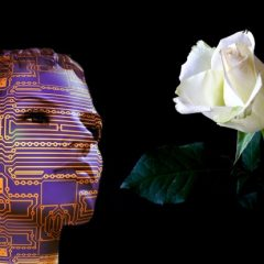 Artificial Intelligence and White Rose